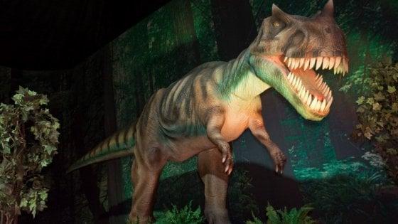 Grazie alla realtà virtuale tornano in vita i dinosauri