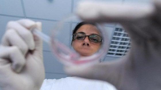 Nati i primi topolini concepiti senza ovuli