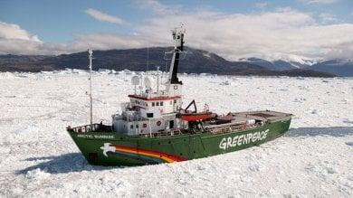 Greenpeace compie 45 anni   foto   in prima fila per la tutela dell'ambiente