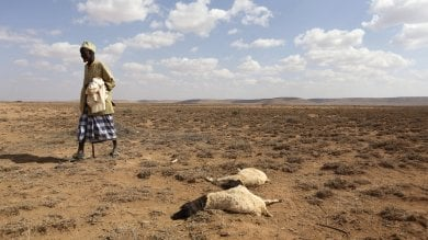 Etiopia, prima la siccità poi gli alluvioni.  La campagna per sostenere la popolazione