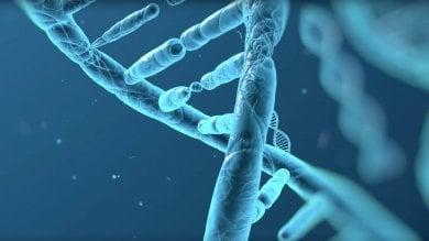 La rivoluzione della genetica fai-da-te