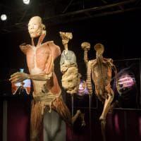 """""""Real bodies"""", il corpo umano in mostra a Milano"""