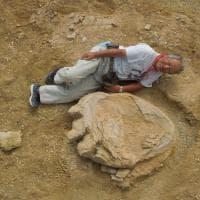 Mongolia, trovata impronta di dinosauro più grande al mondo