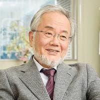 Il giapponese Yoshinori Ohsumi vince il Nobel per la medicina