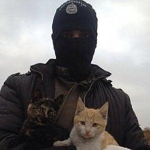 L'Isis dichiara guerra anche ai gatti: vietato tenerli in casa