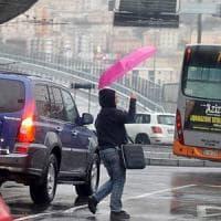 Maltempo, albero su scuolabus a Roma: 3 feriti fra cui una bimba. Danni e paura in Liguria