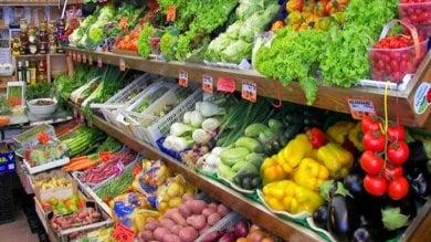 Un prestito iniziale e forniture assicurate: da Fondi a Roma le frutterie di camorra