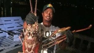 Pesca record: presa (e liberata)  aragosta gigante da sei chili