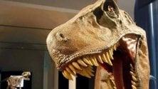 """""""I dinosauri eliminati  dalla materia oscura"""" L'ipotesi di Randall  di LUCA FRAIOLI"""