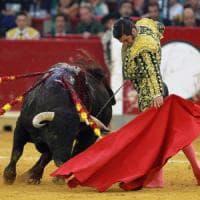 Corrida in Catalogna, annullato il divieto. Barcellona: