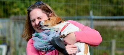 La leccata del cane pericolosa? Più germi se si bacia il partner