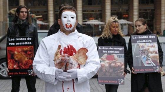 Diritti degli animali: la scelta vegana degli intellettuali