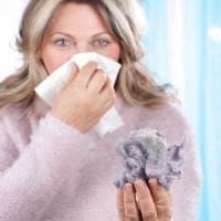 Acari della polvere e allergie, scoperte le origini molecolari