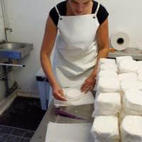 In una bottega di Madrid la riscossa dei formaggi spagnoli