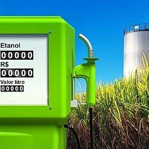 Biocarburanti, per produrli espropriate terre agricole grandi come il Belgio e l'Olanda