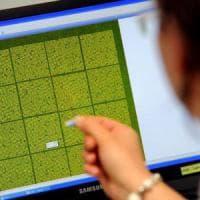 """Consiglio Europa: """"Stop test genetici assicurazioni"""""""