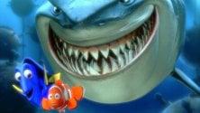 Nemo abita qui un tuffo nella barriera