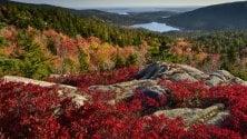 Rosso americano: estate indiana  nel New England