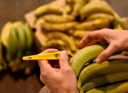 Cucine del Mondo: e la tarte tatin (creola) si fa con le banane
