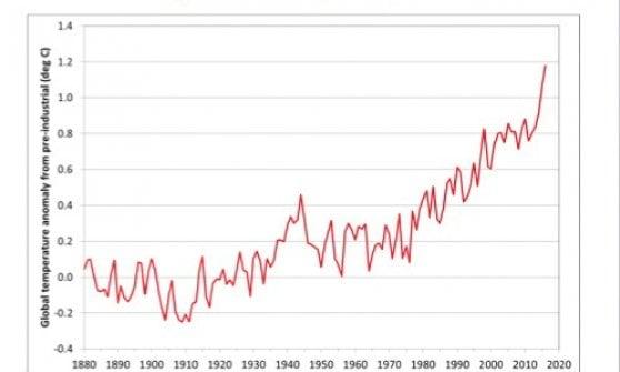 "Clima, l'Onu: ""Il 2016 sarà l'anno più caldo di sempre"""