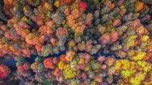 L'autunno ripreso dal drone dal Canada alla Lituania
