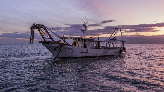 La crisi della pesca. In ginocchio per concorrenza e crollo dei prezzi