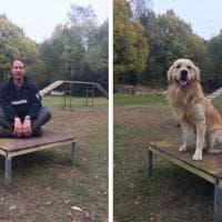 Il tuo cane ricorda quello che fai