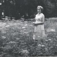 Szymborska, poetessa globale