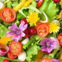 Rivoluzione verde al Bocuse d'Or: nella prova finale solo frutta e verdura