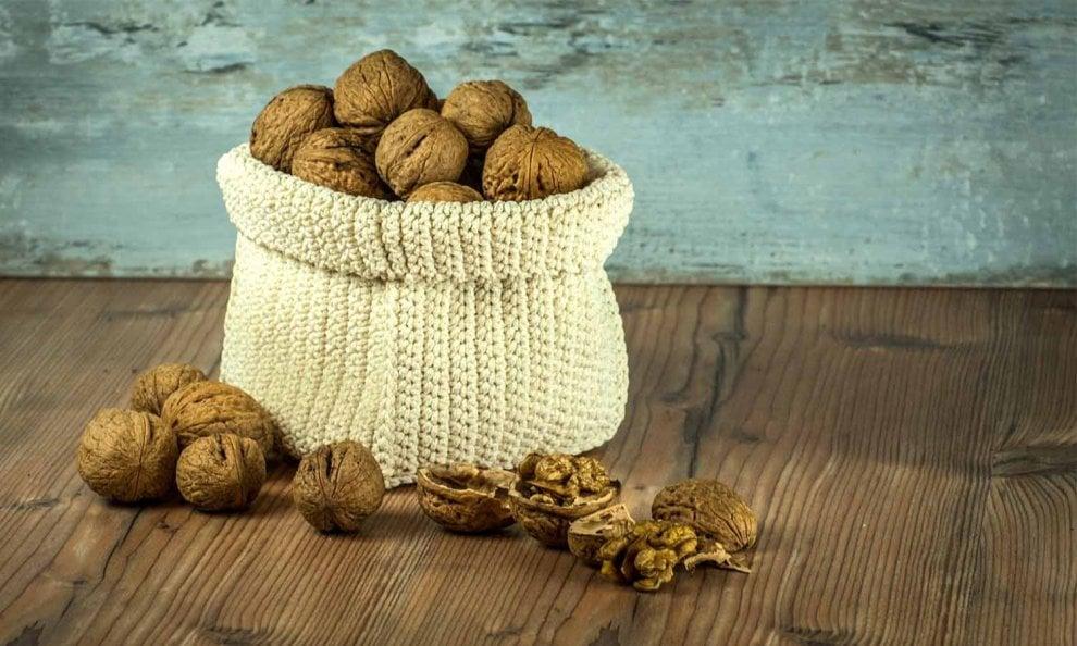 Noci, nocciole, mandorle: tutti i benefici della frutta secca