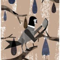 "Frans de Waal: ""Ma quant'è intelligente l'amico bonobo"""