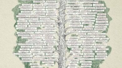 Interattivo  L'albero della filosofia dalle origini a oggi in un manifesto