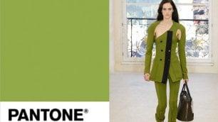 Greenery è il colore del 2017 svelata nuova tendenza Pantone