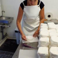 Più garanzie su latte e formaggi: un decreto sull'obbligo dell'etichetta di origine