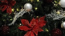 Gli alberi di Natale in 9 case di italiani su 10. Quelli veri 3,5 milioni