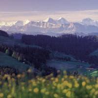 Alla scoperta della Svizzera con il Grand Tour dei formaggi