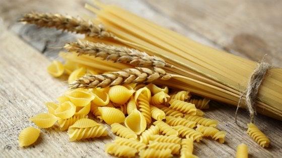 """Solo grano italiano nella pasta? """"No, servono anche quelli esteri"""""""