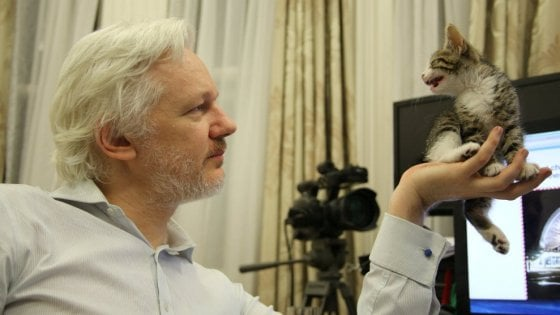 "Julian Assange: ""Donald? It's a change anyway"""