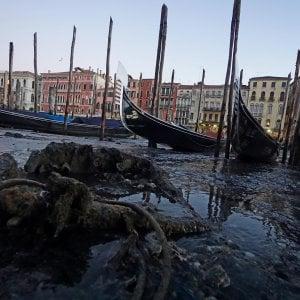 Venezia, tenta violentare una turista la notte di capodanno: arrestato