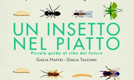Rassegnatevi: in un futuro non troppo lontano tutti mangeremo gli insetti