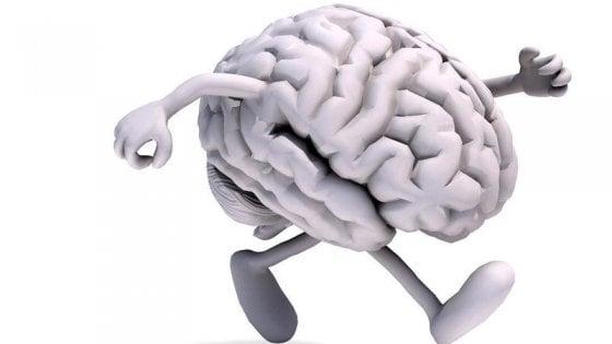 Running e cervello, con la corsa più qualità cognitive