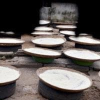 La Babele delle farine: quante poche informazioni su un alimento così diffuso