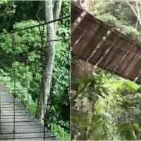 Colombia: il ponte di Villavicencio prima e dopo il crollo