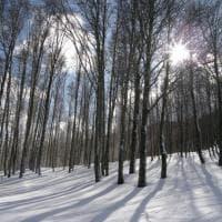Calabria. La stagione della neve
