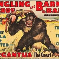 Chiude lo spettacolo più grande mondo: il Circo Barnum cala il sipario dopo 146 anni