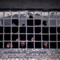 Migranti, il cielo sopra Belgrado: ecco gli 'angeli' che combattono per la sopravvivenza