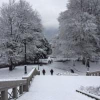 Maltempo e neve, le foto dei lettori