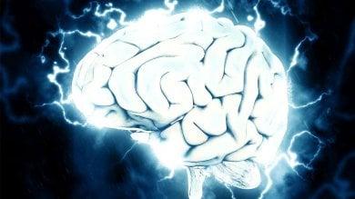 Ecco i neuroni che percepiscono  il passare del tempo. E come manipolarli