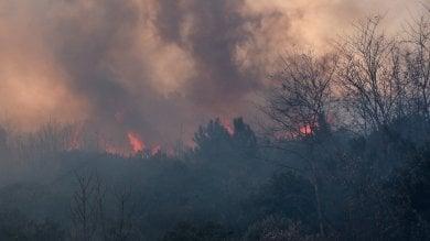 Liguria, è emergenza incendi -   foto     video   Nuovi fronti, caccia ai piromani -   foto