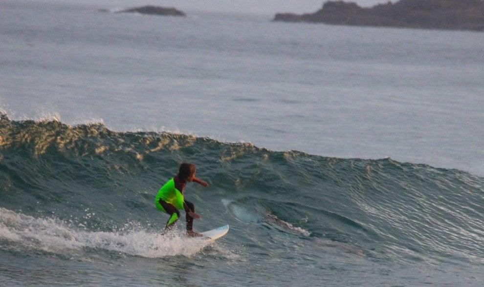 Australia sotto la tavola da surf uno squalo bianco a 10 anni protagonista di uno scatto unico - Tavola surf usata subito it ...